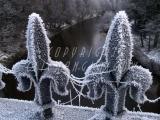 14.12.2010 Snow 017.jpg