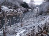 14.12.2010 Snow 040.jpg