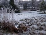 14.12.2010 Snow 053.jpg